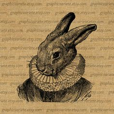 Rabbit Human Clothes Alice Portrait Digital Collage Sheet Download Image Burlap Fabric Transfer Iron On Pillows Totes Tea Towels 0633 on Etsy, $1.00