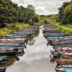Color river #river #colors #boat #ireland #ringofkerry #water #tree #sky #clouds #reflection #wood #photooftheday #beautiful #summer #nature #amazing #tbt #picoftheday #igers #instadaily #manumarra #travel #avventure #irish #landscape #kerry #visitireland #turism #instago #wanderlust