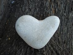 Natural heart shaped rock