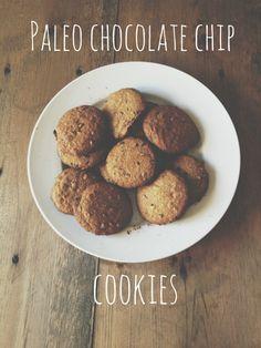Paleo Protein Cookies