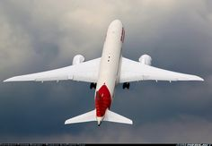 Air India, Boeing 787-8 Dreamliner aircraft picture