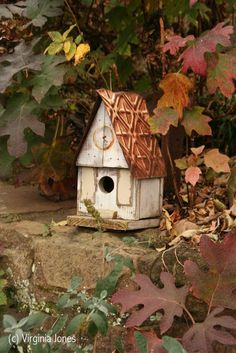 Birdhouse and Autumn leaves!