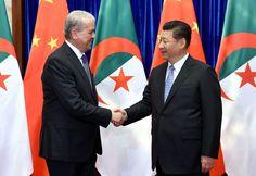 Carnegie: L'Algérie doit copier le Maroc, pour améliorer ses liens économiques avec la Chine