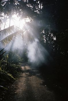 Sri Lanka (2010) / photo by Lin Zhipeng
