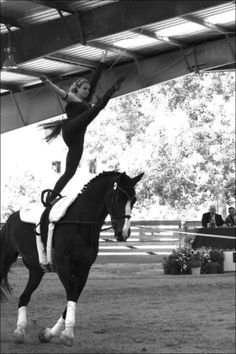 equestrian vaulting.. would love to be able to try this.
