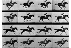 A man rides a galloping horse as seen in this series of photographs depicting motion. These images, taken by Eadweard Muybridge, demonstrated a then-contentious theory that all four legs of a horse left the ground when at full gallop. From a limited edition of 295.
