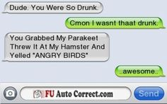 Angry birds on Hamster - funny text messages