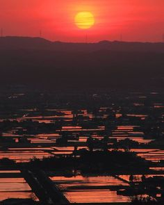 夕陽のクライマックス。水田には赤が染まります(^^) #散居村 #sankyoson #砺波 #tonami #富山 #Toyama #北陸 #hokuriku #日本 #japan #夕陽 #夕日 #sunset #水田 #paddy #絶景 #superbview #東京カメラ部 #japan_daytime_view #lovers_nippon #loves_nippon #team_jp_ #team_jp_西 #wu_japan #ig_japan #ptk_japan #bestjapanpics #jp_gallery #igs_asia #写真好きな人と繋がりたい