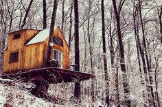 Romantic tiny forest home built in 6 weeks for $4,000 : TreeHugger