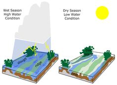 Wet and dry season high and low water conditions. Go Hydrology!