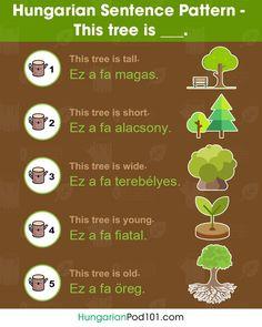 "Norwegian Sentence Pattern - ""This tree is. Chinese Sentences, French Sentences, Spanish Sentences, Arabic Sentences, Arabic Phrases, Chinese Phrases, Learn Portuguese, Learn Turkish, Learn German"