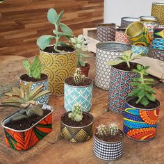 43 Ideas For Succulent Pots Diy Projects Home Crafts, Diy And Crafts, Painted Plant Pots, Diy Cans, Tin Can Crafts, Decoration Plante, Deco Floral, Diy Recycle, Succulent Pots