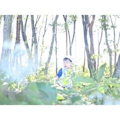 【sola_mami】さんのInstagramの写真をピンしています。《𓅿⑅ * 森の精霊ならぬ * 森のタヌキくんw * #ビミョーな顔#1歳児#1歳半#男の子#秋#10月#森#林#草木#雑草#緑#自然#木#草花#生い茂る#マイナスイオン#森のたぬき#こども#親バカ部#三沢#青森#aomori#babyboy#nature#woods#forest#trees#weed#kid#kids_japan》