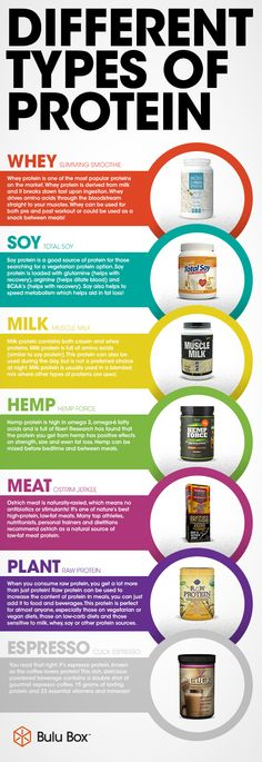 different_types_of_protein_infographic