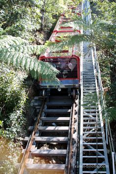 Katoomba Coal Mine Train - Blue Mountains National Park, Australia