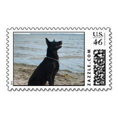 Lacquer Black German Shepherd US Postage Stamps
