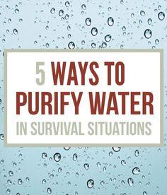 How To Purify Water - Survival Water Purification   Survival Prepping Ideas, Survival Gear, Skills & Emergency Preparedness Tips - Survival Life Blog: survivallife.com #survivallife