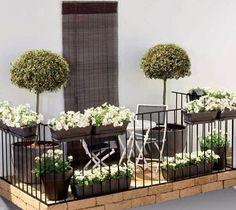Jakie wybrać kwiaty na balkon?