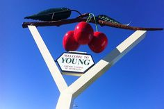 Y is for Young, NSW - Cherry Capital of Australia