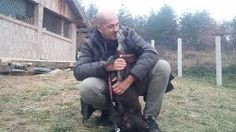 Caki Bravo is becoming rather well known across Sarajevo as the man who saves dogs. The 6′ 2″ tall taxi driver is a gentle giant whose passion leads to the rescue of at least a dozen street dogs each month. Caki's latest rescue was caught on video, and his over-the-moon reaction is something viewers can't stop watching.  This month, Harmony Fund is helping Caki and his rescue teammates to provide food, veterinary care and sheltering for thousands of dogs in Bosnia.