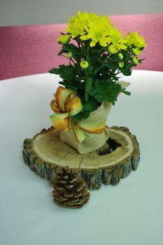 Centerpiece #treeslice #handmadewedding #wedding #carnation #burlap