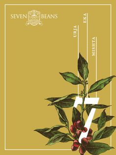 From Bean to Cup: we grow coffee, we know coffee! Flower Typography, Graphic Design Typography, Book Design, Layout Design, Print Design, Flower Graphic Design, Graphic Design Inspiration, Creative Poster Design, Coffee Poster