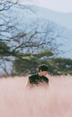 Cha Eunwoo Astro, Cute Panda Wallpaper, Panda Wallpapers, Dream Boyfriend, Kim Myung Soo, Cha Eun Woo, Korean Actors, Suho, True Beauty