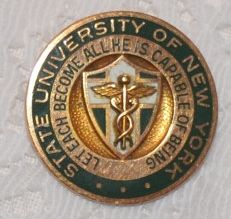 State University of NY Pin