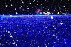 [light snow] 대한민국 No.1 감성채널. 얼라우투(allowto.co.kr)