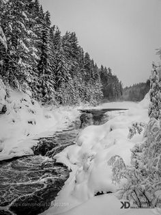 Kivach Falls in Karelia by DariaKlepikova black and white fall forest lake light river snow travel tree trees water waterfall winter Kivach Fa Landscape Photography, Nature Photography, Russian Poets, Russian Landscape, Hydroelectric Power, Destinations, Black And White Photography, Land Scape, Plus Jamais