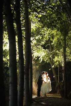 Forest kissing