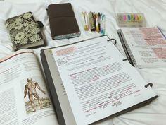 Imagem de study