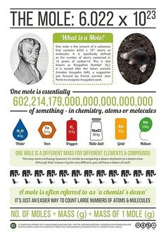 Buy 'Avogadro & The Mole' by Compound Interest as a Poster. A summary poster on Avogadro & The Mole. Chemistry Classroom, High School Chemistry, Teaching Chemistry, Chemistry Lessons, Science Chemistry, Middle School Science, Organic Chemistry, Science Lessons, Chemistry Revision