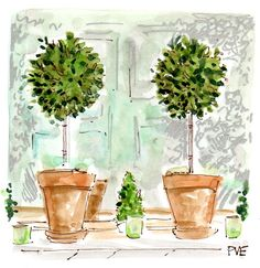 March is here bring on the green! by jmclaughlinny Watercolor Plants, Watercolour Painting, Evelyn Henson, Chinoiserie Chic, Topiaries, Botany, Mother Nature, Sketching, Floral Arrangements