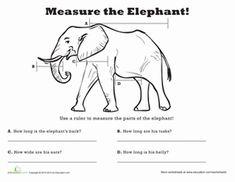 Measure Length: Elephant! Worksheet
