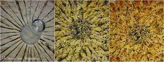 U nás na kopečku: Slaný trhací koláč