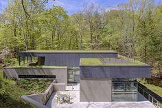 Residência Moderna Integrada à Natureza-vista do detalhado ecológico