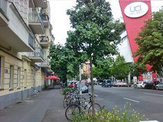 Gleimstrasse. Street View