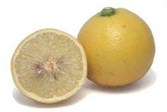Bergamot Essential Oil - Sunny floral-fruit cheer