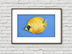 Instant image download, Pastel Fish Picture, Mandarin Fish, Coral Fish, Tropical Fish, Home decor, Wall Decor Art, Fish Art by PastelFishArt on Etsy