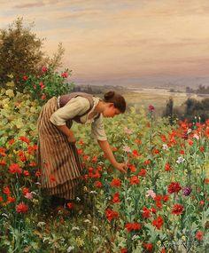 Menina Colhendo Papoilas - Daniel Ridgway Knight e suas mais belas pinturas