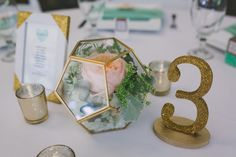 Waimea Valley, Place Cards, Place Card Holders, Table Decorations, Home Decor, Decoration Home, Room Decor, Home Interior Design, Dinner Table Decorations