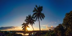 Sunrise Paradise Palms - Sunrises, sunsets, and rainbows on a topical paradise island in the south pacific.