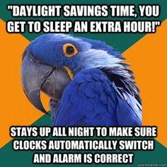 So there's socially awkward penguin, anxiety cat, and now paranoid parrot? And I relate to all three of them? No way lol. Okay I need sleep, it's am. I'll browse again tomorrow for pins I relate to lol Anxiety Cat, Anxiety Humor, Social Anxiety, Anxiety Girl, Test Anxiety, Memes Humor, Memes Lol, Funny Memes, Hilarious Stuff