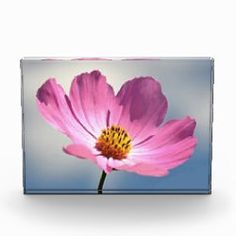 Photo block with flowers