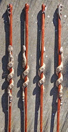 Hand carved wooden Fence Lizard and rattlesnake walking stick, by Mike Stinnett Handmade Walking Sticks, Hand Carved Walking Sticks, Wooden Walking Canes, Wooden Canes, Wooden Walking Sticks, Walking Sticks And Canes, Wood Sticks, Wood Carving Faces, Wood Carving Designs