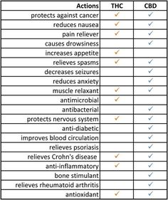CBD & THC Benefits Chart. Go to this link. Kannaway.com/the-buzz-launch/  enter ID 5434947