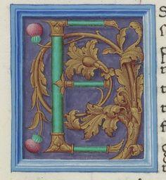 S. Gregorius Magnus I, papa, Moralia in Job. XXIV. S. Gregorius Magnus I, papa…