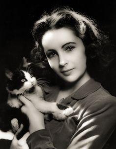 Elizabeth Taylor -  hollywoodzka aktorka urodzona w Wielkiej Brytanii, wyróżniona wieloma nagrodami, w tym dwoma Oscarami: w 1961 za rolę Glorii Wondrous (BUtterfield 8) i w 1967 za rolę Marthy (Kto się boi Virginii Woolf?).http://www.kotysos.org/daj-procenta-na-kocieta/