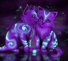 Astral kitties